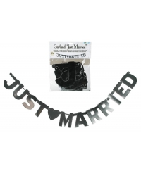 Banner JUST MARRIED metalizat